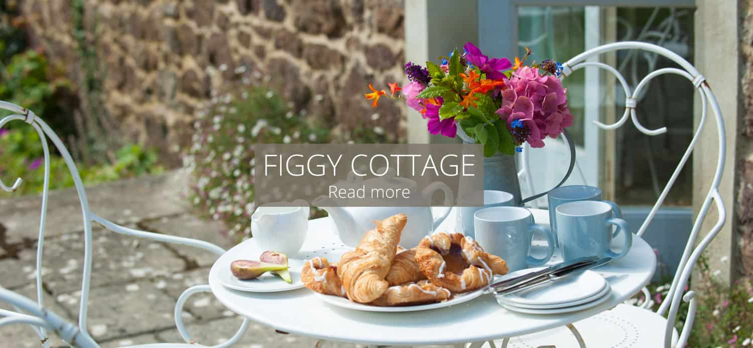 Figgy Cottage Self Catering Cottages Devon