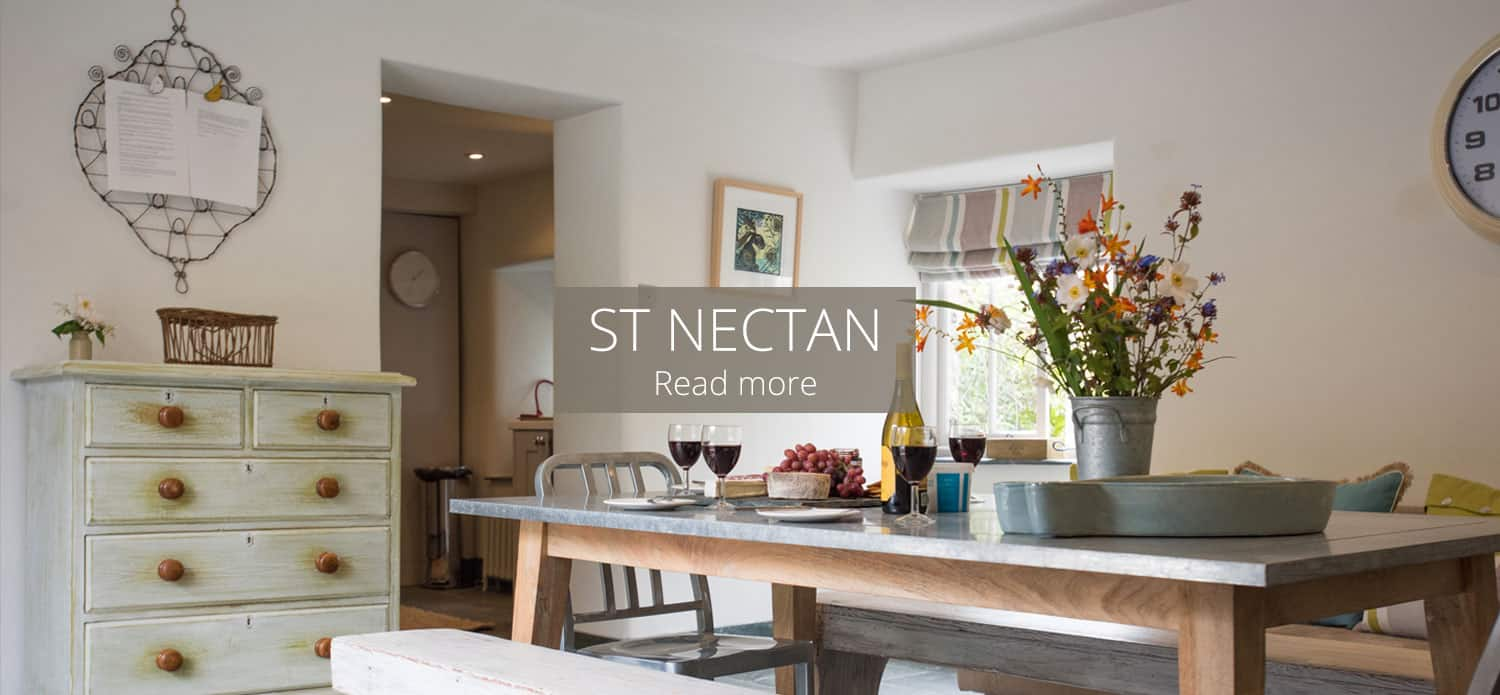 St Nectan Self catering Cottage Devon